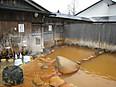 20120323_furu