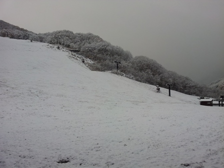 Takahata_1266
