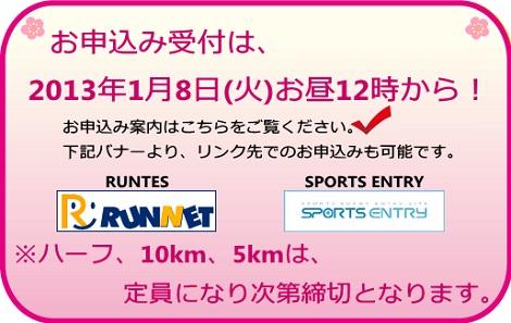 Sakura_rs